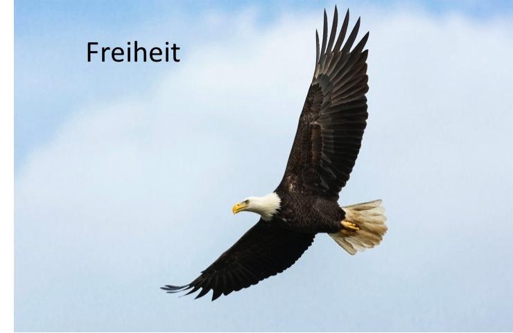 01-Freiheit