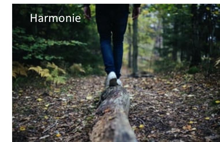 05-Harmonie